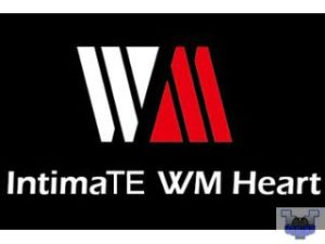 IntimaTe WM Heart sillas gaming